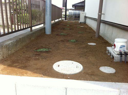 クラピア植栽後(北側)