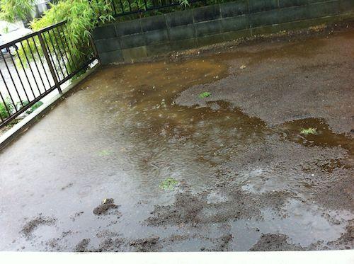 雨が強くなってきた時の庭