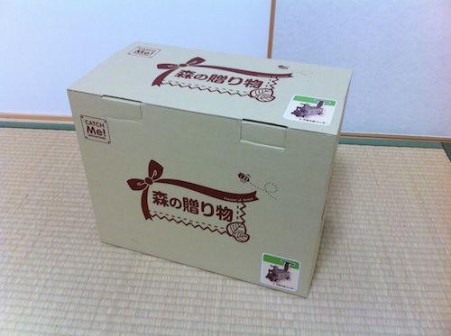 「木's 乗用ブーブー」の箱