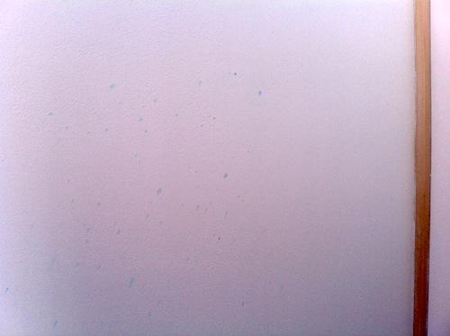 漆喰壁にシミが付いた。