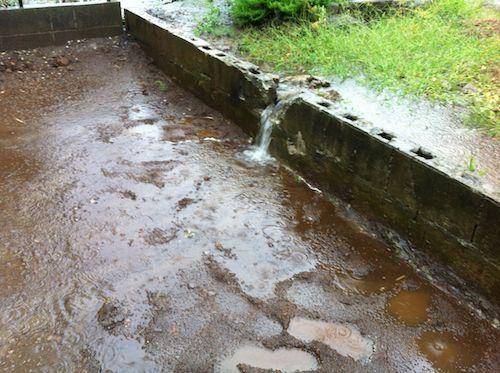 燐家から流れてくる雨水